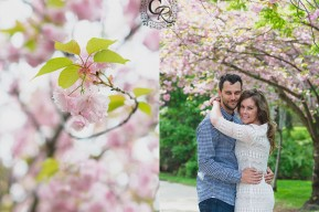 Cherry Blossom Engagement Photo Mississauga Ontario